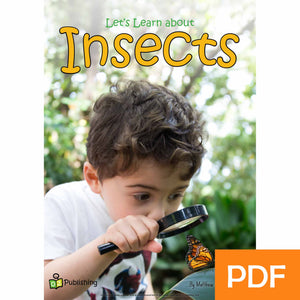 Let's Learn about Insects eBook