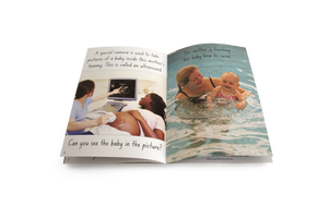 Let's Learn about Mums and Babies Big Book