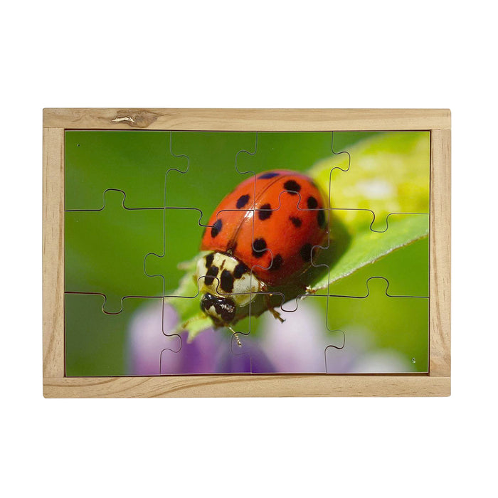 Lady Beetle Puzzle