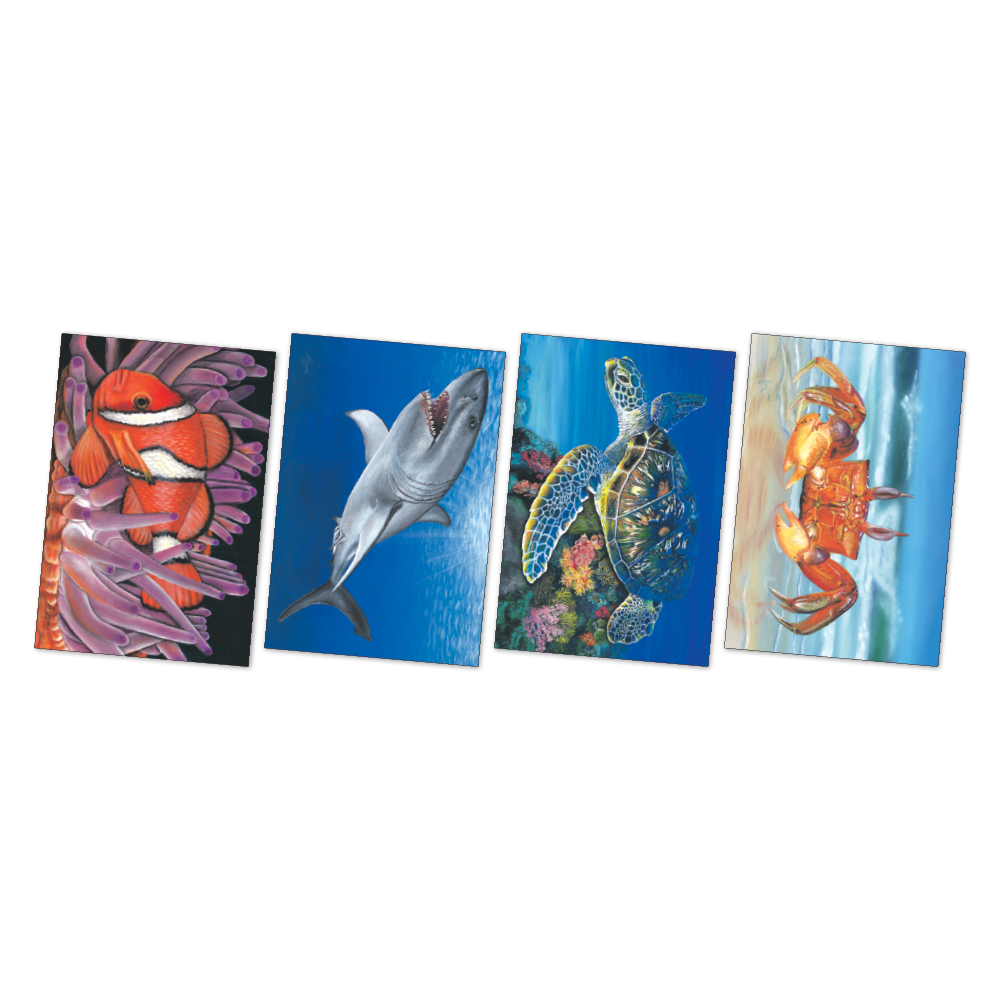 Large Sea Creatures Poster Kit