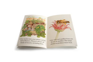 Set of 5 Big Books - With FREE 'Allergies' Poster Pack