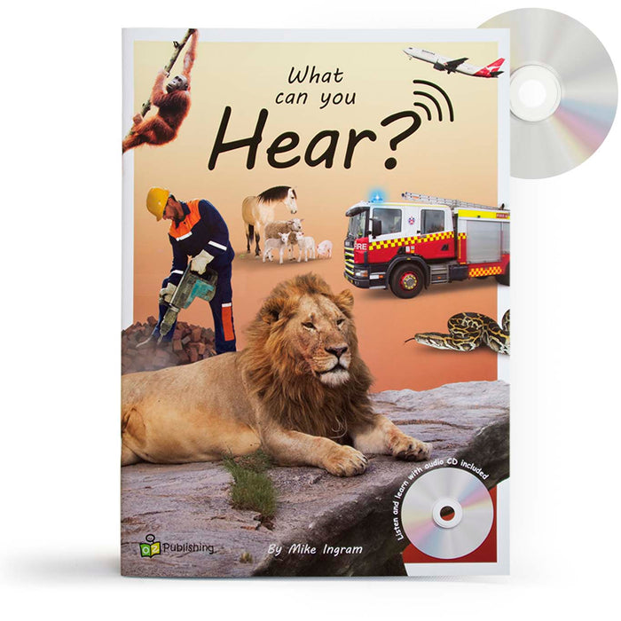 What can you Hear? Big Book