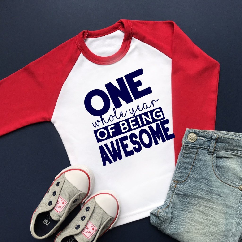 One Whole Year of Being Awesome Raglan Shirt, Boys First Birthday Shirt
