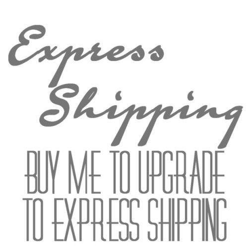 Use this option to Upgrade your Standard Shipping to Express shipping Only-Expedited Shipping-WickyDeez