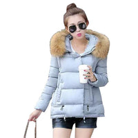 High Classy Winter A-line Down Fur Collar Hooded Wadded Coat Jacket (Available in 6 Colors)-Women's Tops-WickyDeez