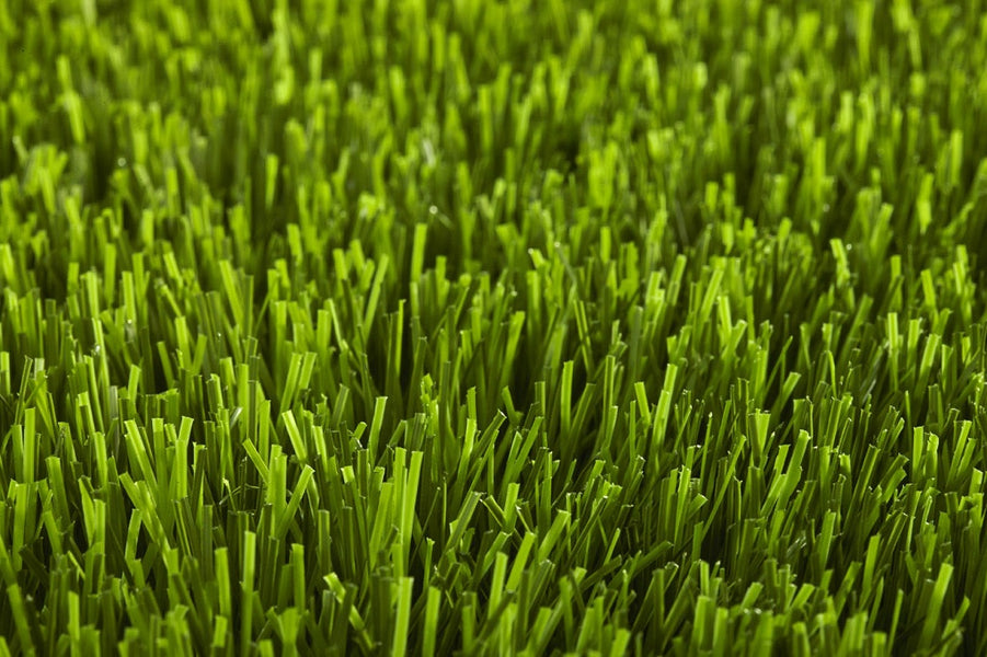 3 Surefire and Quick Remedies to Stop Burning Turf