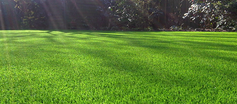 Can You Stop the Sun's Reflection From Burning Your Fake Lawn?