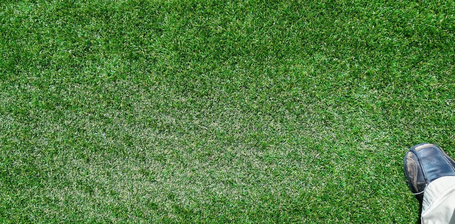 Effects of Energy-Efficient Windows on Artificial Turf