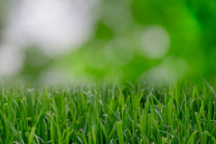 How to Prevent Sunlight From Causing Artificial Turf Melting