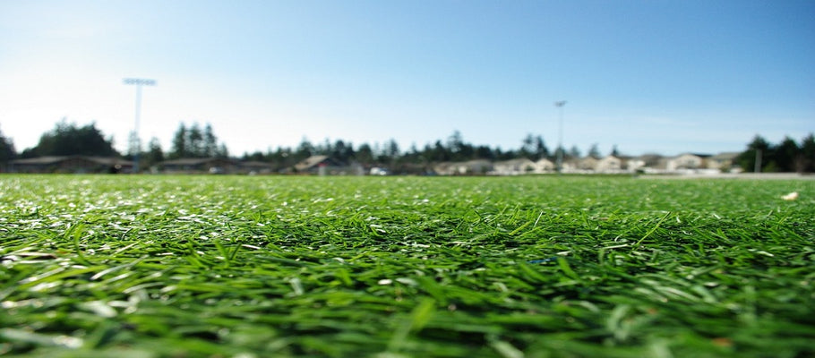 Reasons Why You Should Choose the Best Turf Product Options
