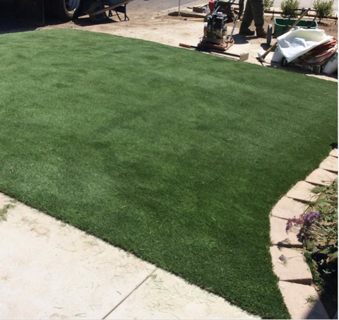 Are Sun Reflections Melting Turf in Phoenix, Arizona? Here's What To Do