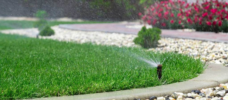 Water Systems vs. Window Perf: Which Is Better for Your Fake Turf
