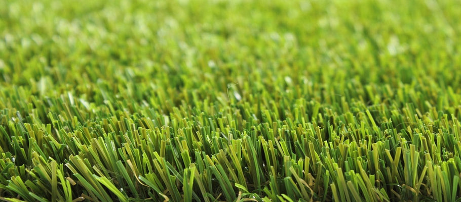 What Your Turf Product Warranty Should Cover and Consider