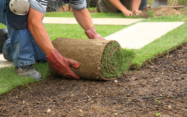 How to Fix Melted Fake Grass The Easy Way