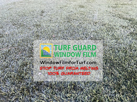 Yes, You Can Prevent Windows from Melting Artificial Turf in Las Vegas