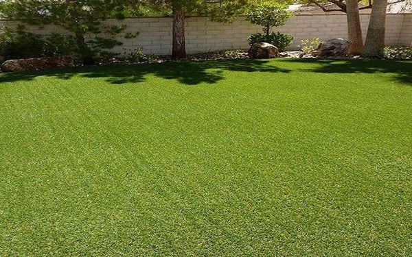 Why You May Want to Switch to Synthetic Grass
