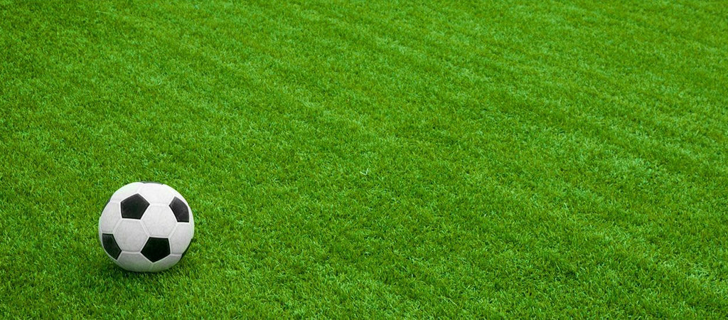 If you own a professional turf or a home aesthetic turf, rest assured that these kinds of grass offer the same purpose and service to all homeowners.