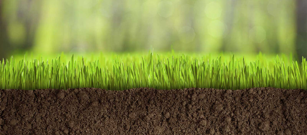 It has been proven time and again that turf preparation is the most difficult part of having an artificial turf. Here are some guidelines you can follow.