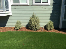 Stop Window Reflection Damaging Turf Grass and Vinyl Siding