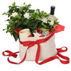 Christmas Plants & Gift Hampers