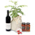 Gourmet Curry tree gift hamper
