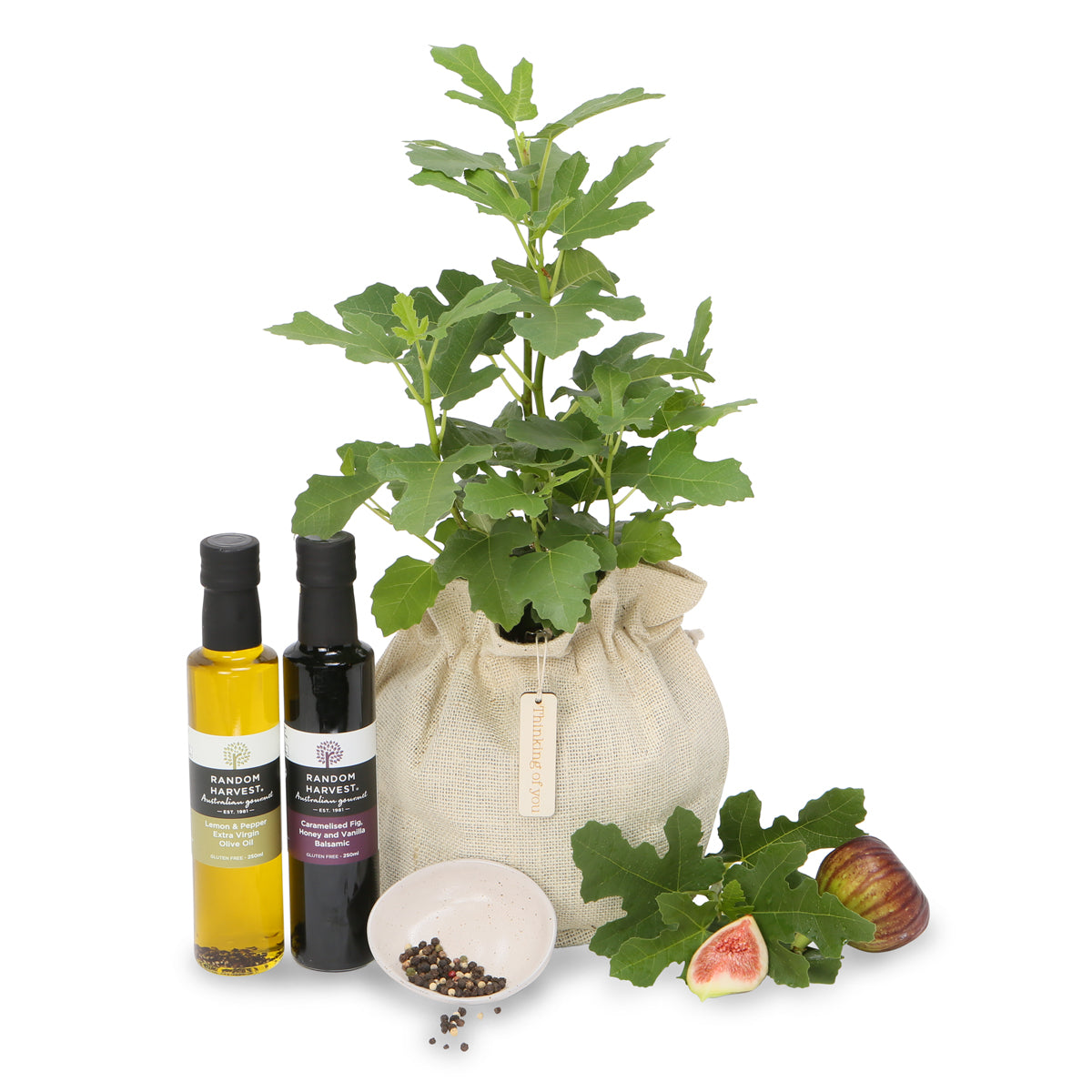 Gourmet Fig tree gift hamper