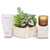 Small zen garden hamper