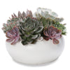 x large succulent om bowl