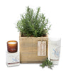 fragrant rosemary square box