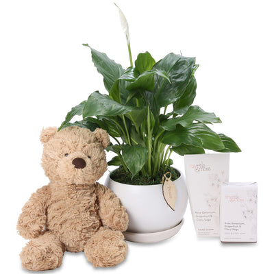 Peace Lily baby Hamper