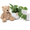 Heart Leaf baby Hamper