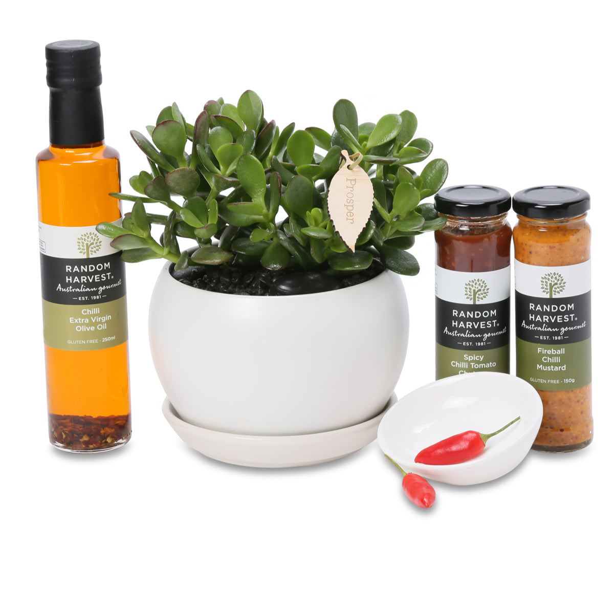 Lucky Moneytree gourmet gift