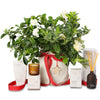 Christmas fragrant gardenia indulgent hamper