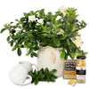 fragrant gardenia tea hamper
