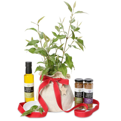 Christmas native tree gourmet gift hamper