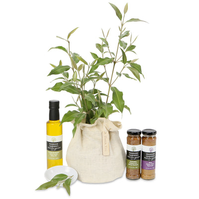 native tree gourmet gift hamper