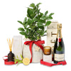Christmas luscious lemon tree celebration hamper