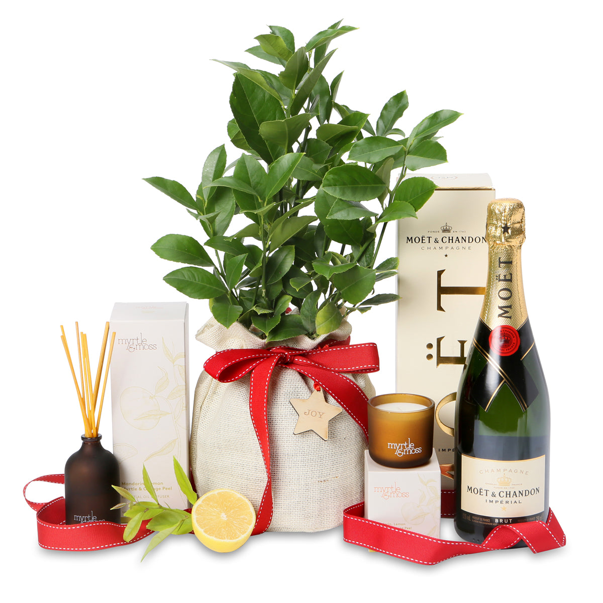 Christmas luscious lemon and Lime Tree celebration hamper