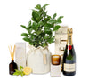 luscious Lemon or Lime tree celebration hamper