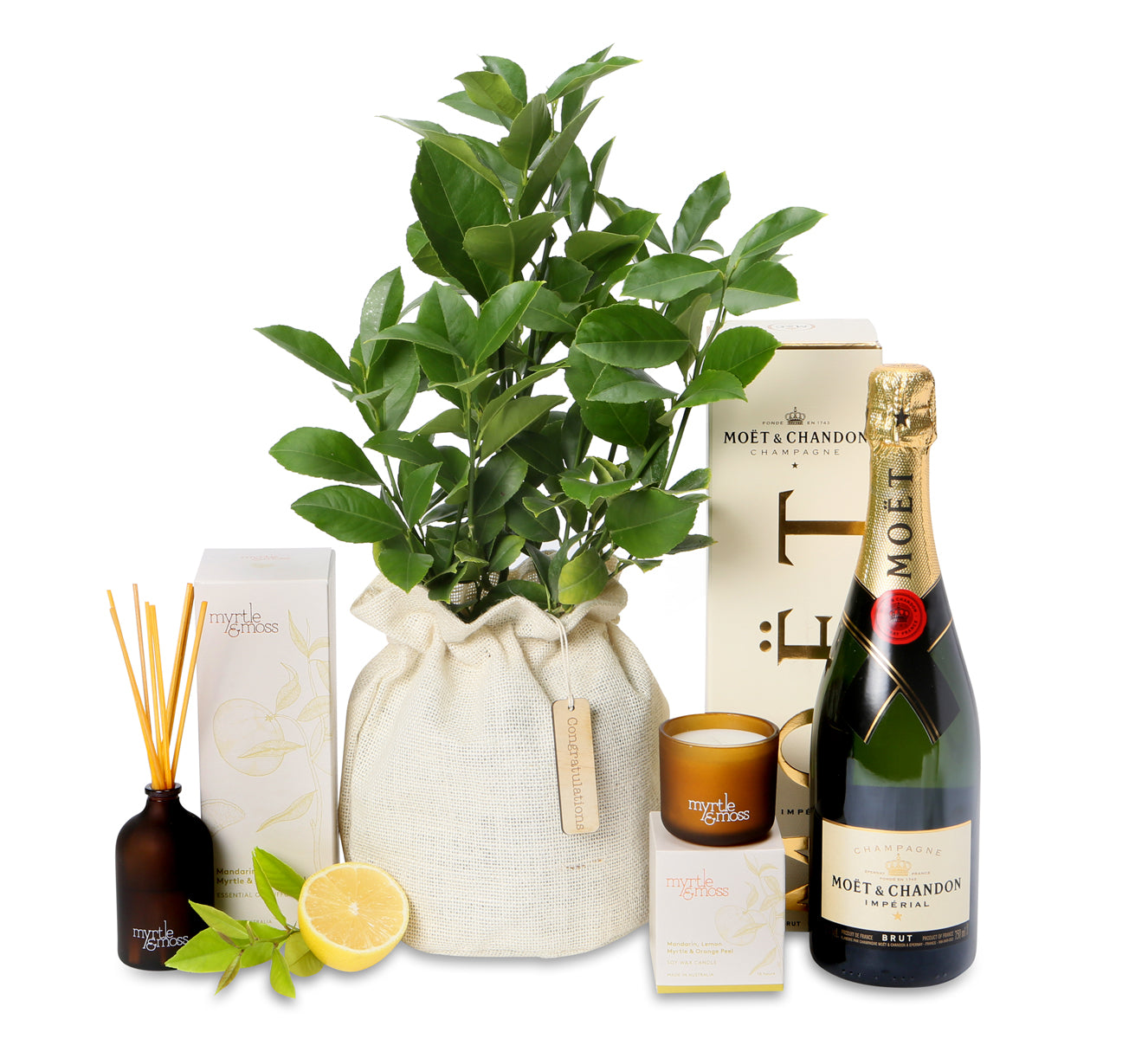 luscious Lemon and Lime tree celebration hamper