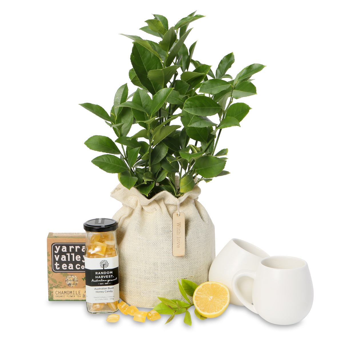 luscious lemon and Lime tree tea hamper