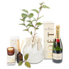 native tree celebration hamper