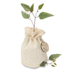 small native gift trees (20 units per box)