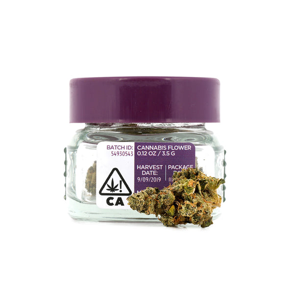 THC Design - CRESCENDO - Sativa - 3.5g - 31.39%