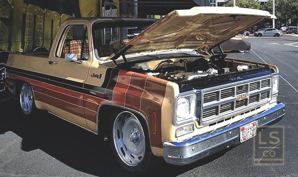LOW SIERRA FOX PACKAGE