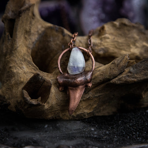 Shark Tooth pendant with Moonstone