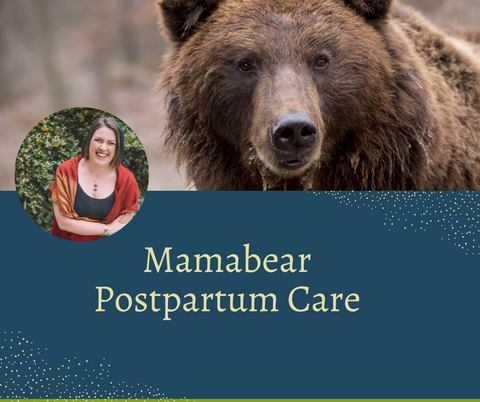 Picture of a brown bear, a woman, and the words Mamabear Postpartum Care
