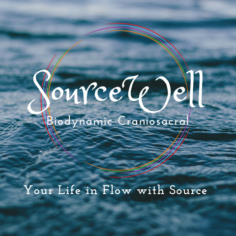 Calm ocean with the text 'SourceWell Biodynamic Craniosacral, Your Life In Flow with Source""