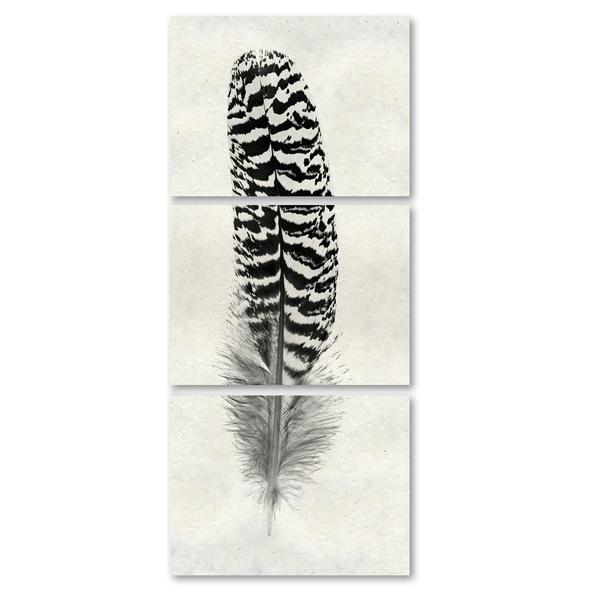 Feather #13 Triptych