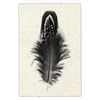 Feather #3